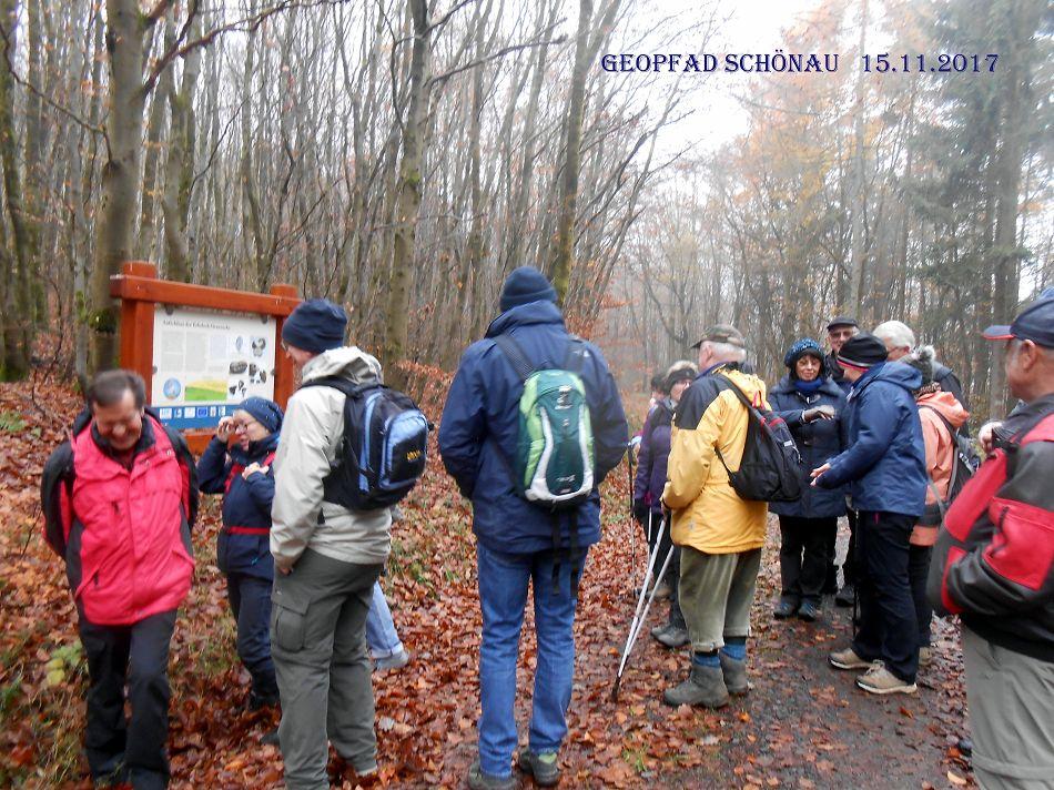 Wanderung im Kellerwald auf dem Geopfad Schönau