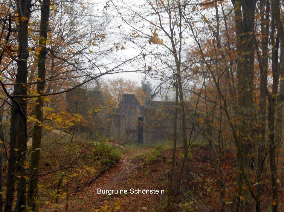 Burgruine Schönstein