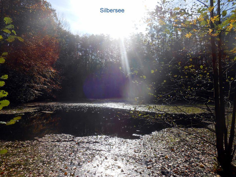 Silbersee