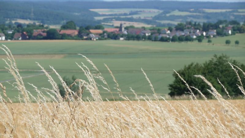Josef-Mertin-Weg